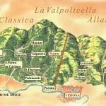 Ferrari Experience into the vineyards